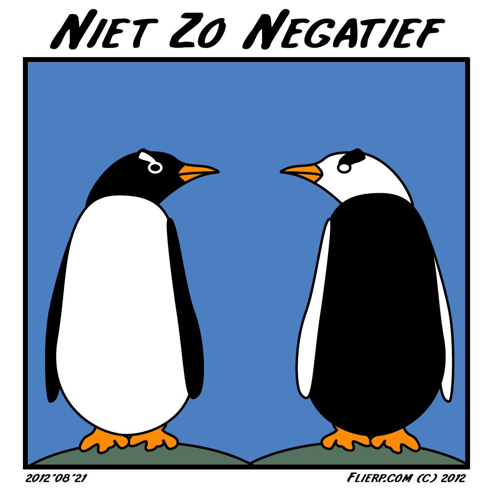 Niet zo negatief