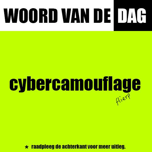cybercamouflage